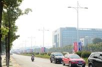 城市公路绿化