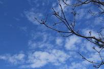 宁静的蓝天
