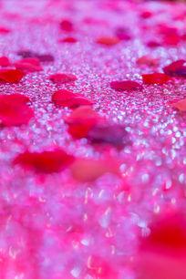 婚礼舞台花瓣