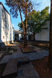 绩溪县博物馆庭院绿化