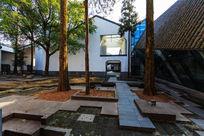 绩溪县博物馆院内树木