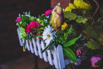 一直鲜艳的花
