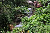 山谷小溪流
