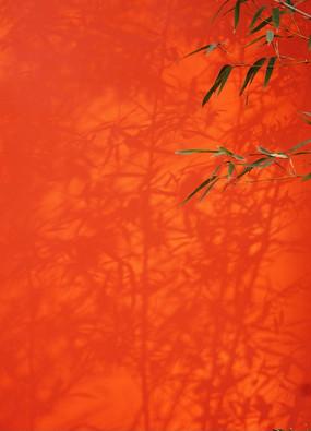 红墙与竹影