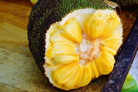 海南菠萝蜜