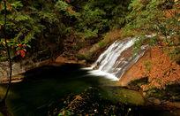 高山瀑布与红叶作画