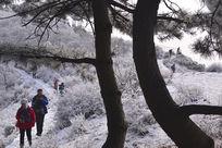 雪山上的游人