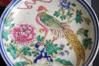 瓷器上的凤凰与牡丹彩图