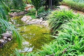 房地产园林景观图片