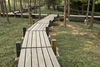 美丽的木栈道
