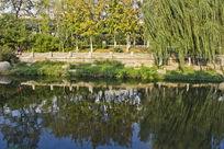 青岛公园的风景