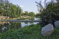 青岛公园的美丽风景