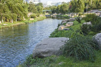 青岛公园的小河风景
