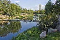 青岛公园风景