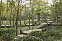 青岛园林风景