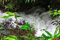 荆竹山的溪流瀑布