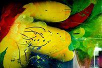 油漆色彩艺术