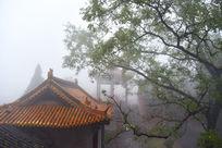 河南林州黄华山觉仁寺