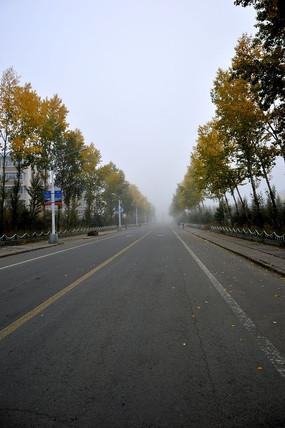 清晨的马路