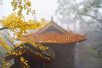 太行山林州市黄华神苑