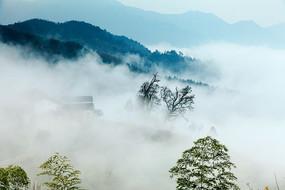 云雾中的休宁金龙山
