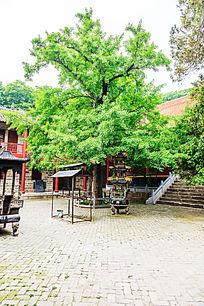 瑞云寺内景观