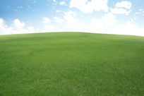 草地与蓝天
