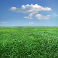 蓝天白云与绿草原