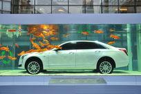 水中创意车展