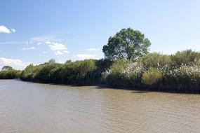 原生态湿地湖泊