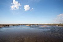 黄河入海口湿地自然风光