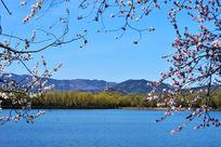蓝天下的西湖美景