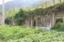 农村旧房子