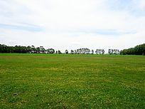绿色草原风景