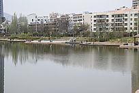 公园湖水风景图片
