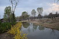 公园湖水图片