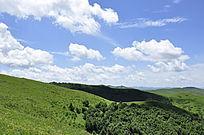 绿色坝上景观