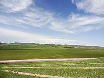 绿色草原旅游