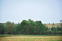 优美草原景观