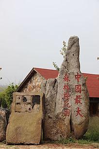 中国最大森林樱花园标志石