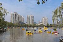 城市公园湖泊