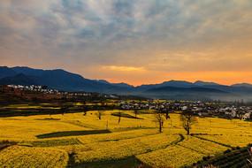 雉山的早晨