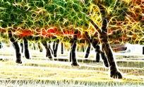 电脑画《金秋枫树》