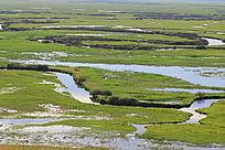 额尔古纳湿地风情