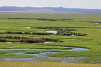 额尔古纳湿地摄影
