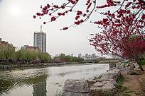 河边的高楼城市风光
