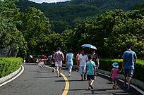 景区游客人群