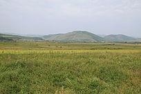 高清内蒙古图片