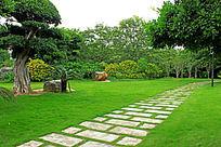 草地石板路