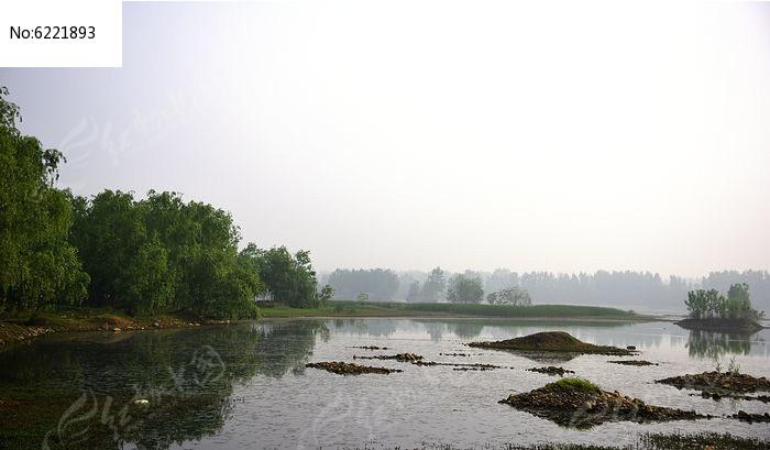 沼泽风景图片